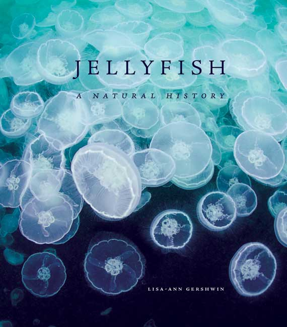 Jellyfish_cover_570