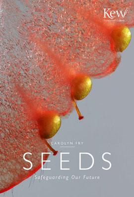 Seeds_270_web